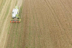 Combine harvesting a fall corn field. Aerial view of combine harvesting a fall corn field Stock Photos