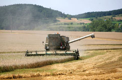 Combine harvesting a field of wheat Royalty Free Stock Image