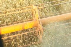 Combine harvesting field Stock Photography