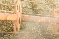 Combine harvesting field Royalty Free Stock Photo