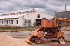 Combine harvesting grain Stock Photo