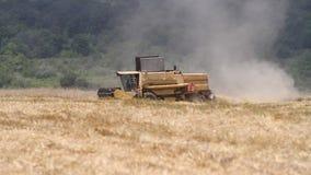 Combine harvesting grain stock footage