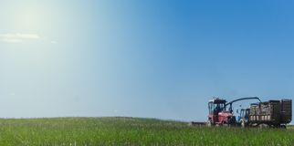 Combine harvesting a green field and unloads wheat for Silage onto a trailer truck. stock images
