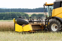 Combine harvesting rape Stock Photography