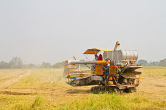 Combine harvesting rice Royalty Free Stock Image