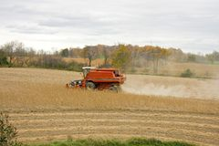 Combine Harvesting Soy Beans Stock Image