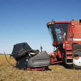 Combine harvesting soybeans Royalty Free Stock Image