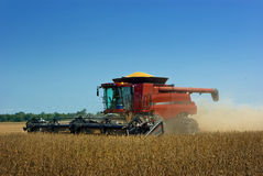 Combine Harvesting Soybeans Royalty Free Stock Images