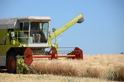 Combine at harvesting time Royalty Free Stock Image