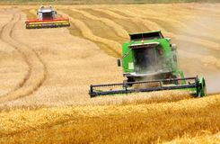 Combine harvesting wheat. Czech Republic Stock Images