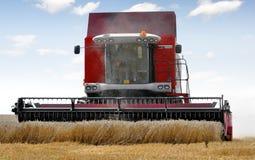 Combine harvesting wheat Stock Photography