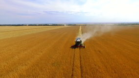 Combine Harvesting Wheat. Aerial stock footage