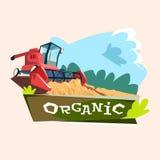 Combine Harvesting Wheat Crop In Field Organic Farming Logo. Flat Vector Illustration Royalty Free Stock Photos