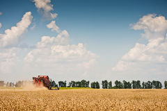 Combine harvesting wheat. On field Royalty Free Stock Images