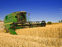 Combine harvesting a wheat field Royalty Free Stock Images