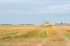 The combine is harvesting a wheat field in autumn. The combine is harvesting a wheat field in autumn Stock Image
