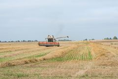 The combine is harvesting a wheat field in autumn. The combine is harvesting a wheat field in autumn Stock Photo
