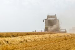 Combine harvesting a wheat field. Combine working the field. Wheat Harvest Stock Images