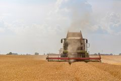 Combine harvesting a wheat field. Combine working the field. Wheat Harvest Royalty Free Stock Photography