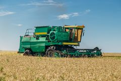 Combine harvesting wheat in the field at sunny day.  Royalty Free Stock Photography