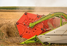 Combine harvesting wheat. In summer day Royalty Free Stock Photos