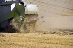 Combine harvesting wheat in sunny, rural field Stock Image