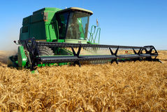 Combine Harveting Stock Photography