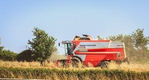Combine las cosechas el trigo en un campo en verano Fotos de archivo