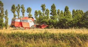 Combine las cosechas el trigo en un campo en verano Imagen de archivo