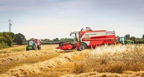 Combine las cosechas el trigo en un campo en verano Foto de archivo libre de regalías