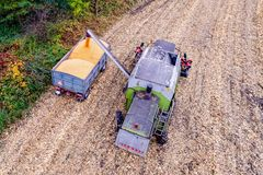 Combine loading corn grain on trailer. Royalty Free Stock Image