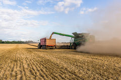Combine machine drains its grain in a tractor Stock Photography