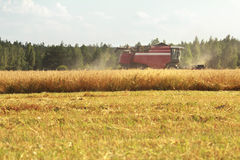 Combine machine with header or cutting blade working in grain summer field Royalty Free Stock Photo