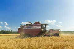 Combine machine with reel and the cutter bar working in farm field Stock Image