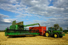 Combine machine and tractor with trailer. Combine machine laeding  trailer with seeds of barley Stock Photography