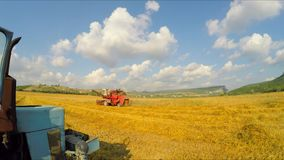 Combine Mowing Grains At Picturesque Lane stock video footage