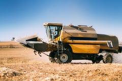 Combine o trabalho em campos agrícolas Fazendeiro que usa a ceifeira de liga e recolhendo o milho imagens de stock royalty free
