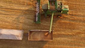 Combine pouring grain into truck. stock video footage