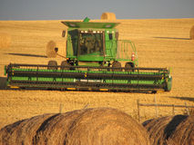 Combine's Work is Done. Here is a picture of a green combine in the stubble field amongst large round bales after harvest is over Stock Image
