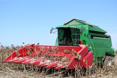 Combine on sunflower harvest Stock Images