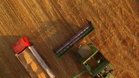 Combine and truck with grain. stock footage