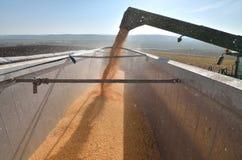 Combine unload the crop Stock Image