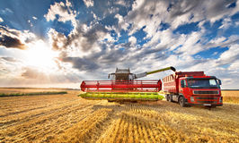 Combine unloading grains Royalty Free Stock Photos