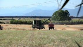 Combine unloading the harvest stock video