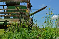 Combine in the Weeds. An old green combine is left in afield surroundd by woods and grass Royalty Free Stock Image