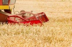 Combine in wheat field Stock Image
