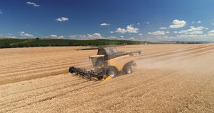 Combine working on harvest agricultural field, aerial drone view stock video