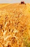 Combine working on a wheat field. A modern combine harvester working a wheat field Stock Photo