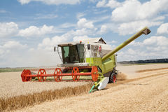 Combine working on a wheat field Stock Photography