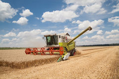 Combine working on a wheat field Royalty Free Stock Photography
